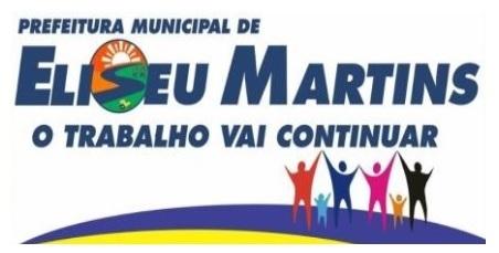 Prefeitura de Eliseu Martins – PI